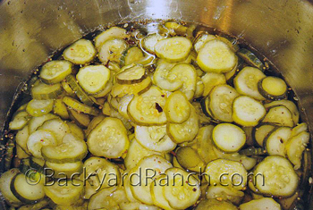 Cucumber slices soaking in vinegar pickling solution.