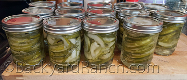 Lime pickles ready to store.